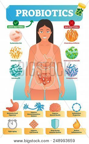 Vector Illustration With Probiotics. Medical Bacteria And Health Benefits Collection Poster With Esc