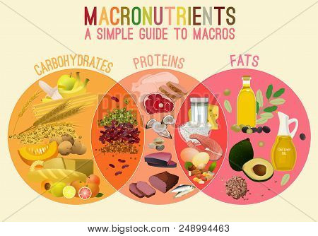 Main Food Groups - Macronutrients. Carbohydrates, Fats And Proteins In Comparison. Dieting, Healthca