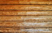 Weathered wooden logs with natural pattern vintage background poster
