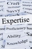 A conceptual look at expertise, ability, knowledge, proficiency savvy poster