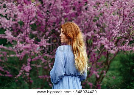 Beautiful Dreaming Redhead Woman In Spring Time Blossom Cherrytrees Garden.