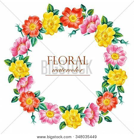 Watercolor Hand Paint Dog Rose Flowers Wreath On White Background, Element For Design, Greeting Card