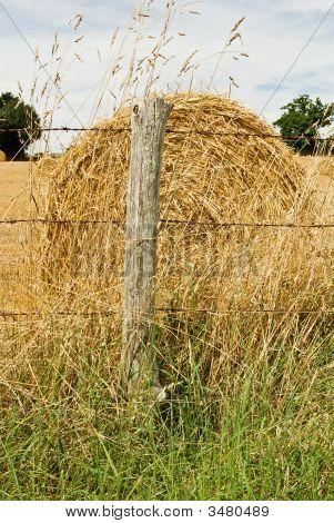 Hay Bale In A Summer Field