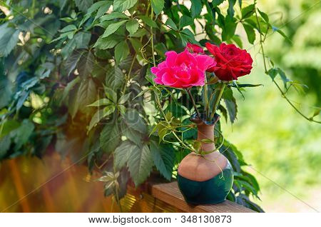 Beautiful Bouquet Of Roses In A Clay Vase Against A Background Of Green Foliage. Sunny Day, Blurred
