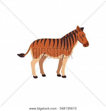 Extinct Animals. Quagga. Prehistoric Extinct North American Striped Horse, Hybrid Of Zebra And Horse