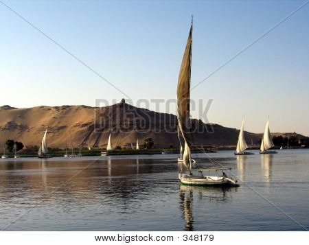 Fellukahs On The Nile