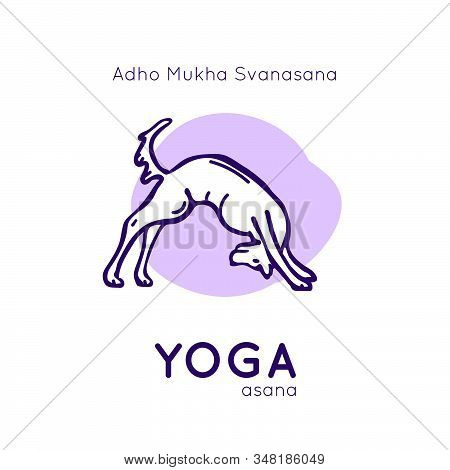 Vector Illustration With Funny Dog In A Yoga Pose Adho Mukha Svanasana On A White Background As Desi