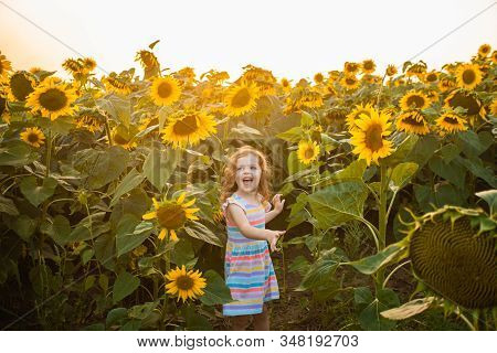 Happy Child Having Fun In Summer Field With Sunflowers. Freedom Concept
