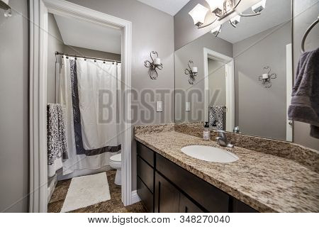 Home Bathroom With Gray Wall Brown Wooden Cabinet And Marble Countertop