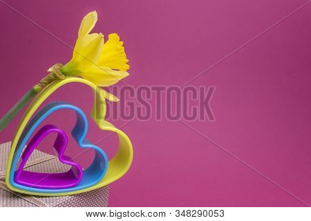 Romantic Valentinesday Still Life With Nested Colorful Heart Shaped Cookie Cutters, A Spring Daffodi