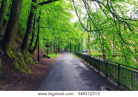 Embankment Promenade Of Tepla River With Alley Of Trees And Street Lights In Karlovy Vary (carlsbad)