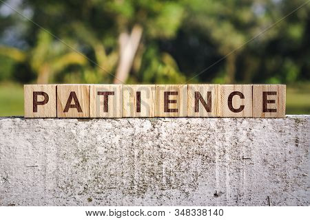 Wooden Block With The Word Patience Against Nature