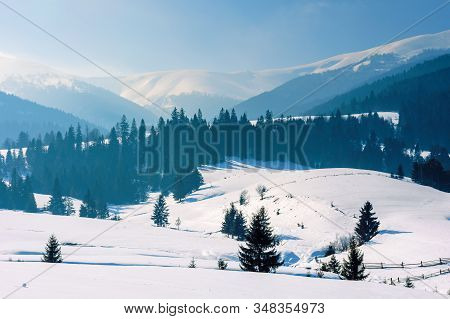 Mountainous Rural Landscape In Wintertime. Stunning Scenery On A Bright Sunny Day. Spruce Forest On