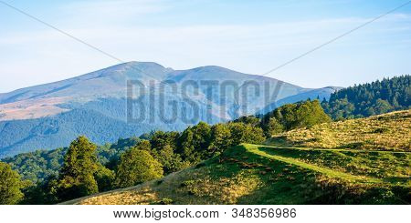 Mountain Landscape With Clouds. Beautiful Summer Scenery. Forest On The Hills