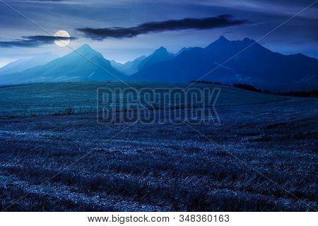 Rural Landscape Of Slovakia In Summer. Empty Wheat Field In August. High Tatras Mountain Ridge In Th