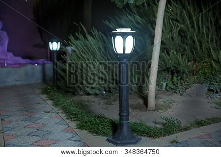 The Backdrop Is Bush That Little Light. Magic Street Lamp Close-up With Copyspace. Warm Lantern Ligh