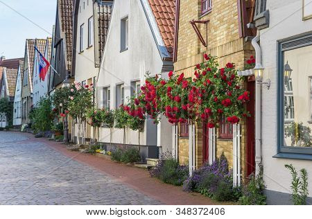 Red Roses In Front Of Historic Houses In Holm Village, Germany