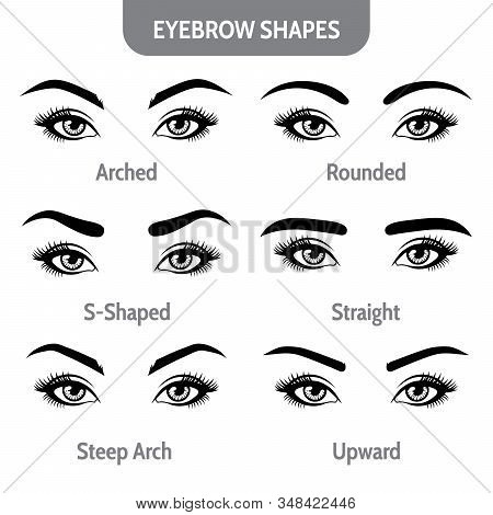 Eyebrow Shapes With Eyes. Various Types Of Eyebrows. Trimming. Vector Illustration With Different Th