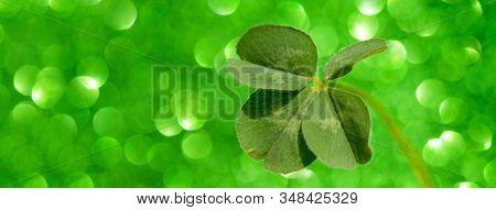 Four Leaf Clover On Sparkling Green Background