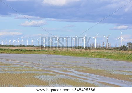 Landscape Filled With Wind Turbine In The Camargue, France