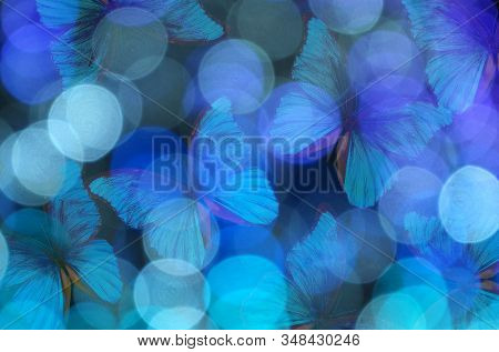 Abstract Blurred Background. Blurry Lights And Blue Morpho Butterflies. Blurry Garland With Blue Lig