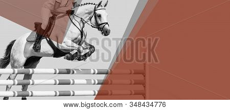 Horse And Rider, Black And White Banner Or Header, Billboard, Duo Tone. Beautiful White Horse Portra