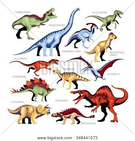 Dinosaur Color Cartoon Set Of Different Kinds Of Jurassic Fossils Persons With Description Isolated