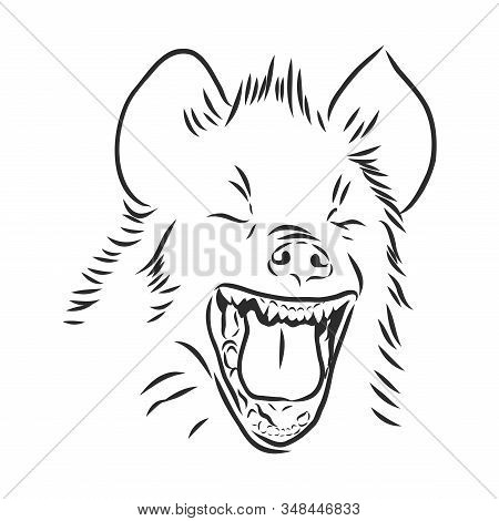 Portrait Of A Laughing Cheerful Hyena. Wild African Animal, Vector Sketch Illustration
