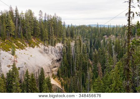 Canyon Surrounded By A Pine Forest Next To Annie Falls Near Crater Lake, Oregon, Usa