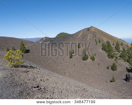 Beautiful Volcanic Landscape With Lush Green Pine Trees And Colorful Volcanoes Along The Path Ruta D