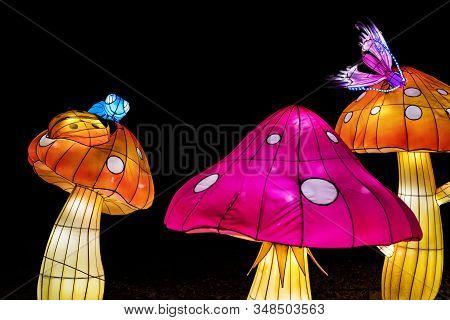 Kyiv, Ukraine-january 19, 2020: Festival Of Chinese Lanterns In Kyiv, Ukraine
