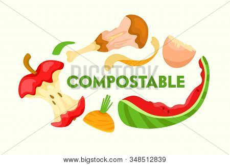 Compostable Vegetable, Fruit And Meat Kitchen Scraps On White Background. Organic Waste For Domestic