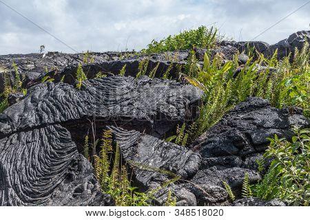 Kaimu Beach, Hawaii, Usa. - January 14, 2020: Closeup Of Blocks Of Hardened Black Lava Field Off Kil