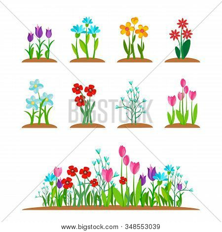 Early Spring Garden Blossom Flowers, Grass Isolated On White. Spring Nature Plant Set. Simple Garden
