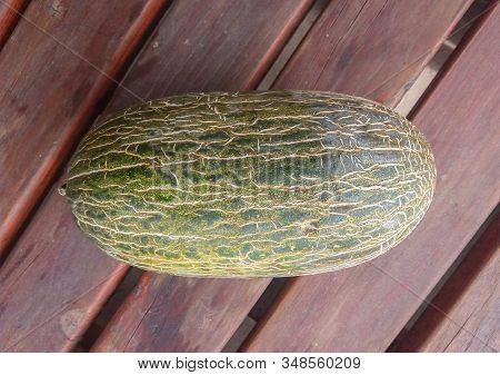 Santa Claus Melon Aka Piel De Sapo (cucumis Melo Inodorus)