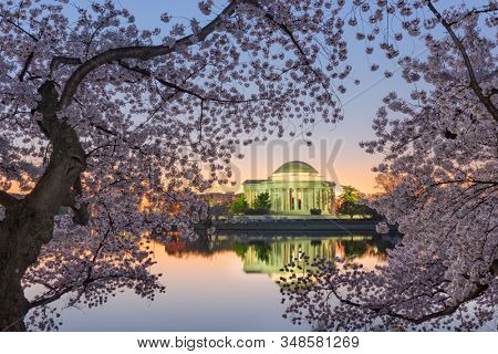 Washington, DC at the Tidal Basin and Jefferson Memorial during spring twilight.