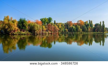 Wonderful Scenic Landscape To Beautiful Green Trees In Sunny Day. Bright Summer Landscapes With Refl