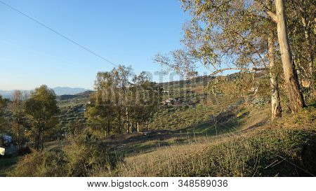 Rural View Of Fields And Meadows In Andalusia