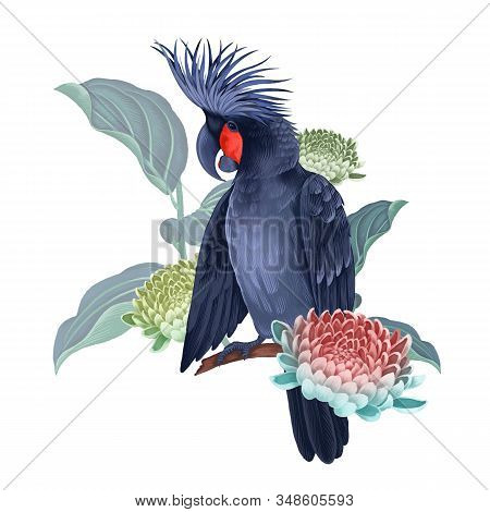Black Cockatoo On The Branches Of A Blossoming Tree Isolated On A White Background. Exotic Floral De