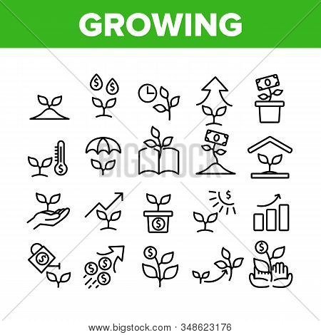 Growing Money Plant Collection Icons Set Vector. Growing Leaves Tree With Banknote And Graphic Arrow