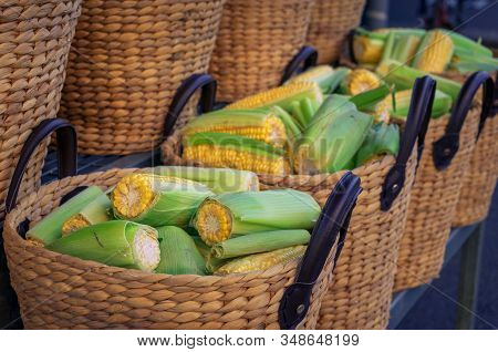Cobs Of Sweet Corn, Corncobs In Weaved Baskets For Sale On Farmers Market. Fresh Organic Produce Sto