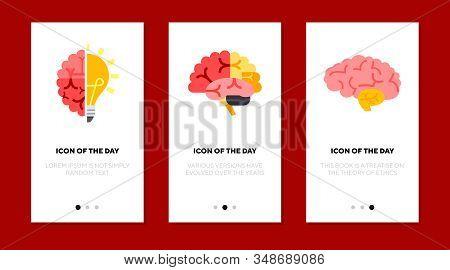 Brain Flat Icon Set. Shining Lightbulb, Pituitary Gland, Hemisphere, Cerebellum Isolated Sign Pack.