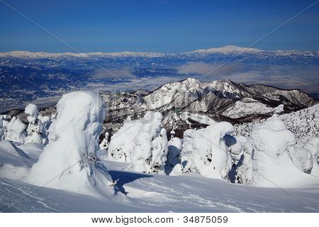 Soft Rime And Mt. Gassan In Japan