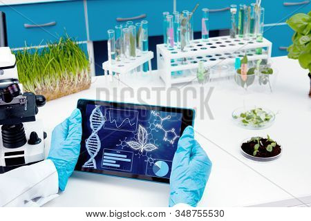 Closeup Scientists Hands Are Holding Tablet. Biologist Is Working At Microbiology Laboratory. Woman