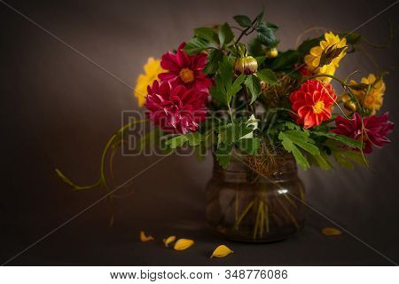 Still Life Of Flowering Plants In Vintage Style.