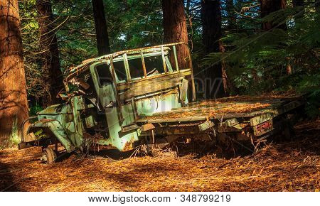 One Very Old Truck Left In A Forest.