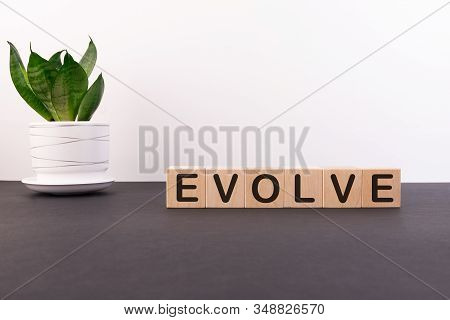 Evolve Word Made With Building Blocks On A Light Background