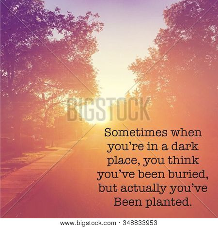 Inspirational Quote - Sometimes when you're in a dark place, you think you've been buried, but actually you've been planted.