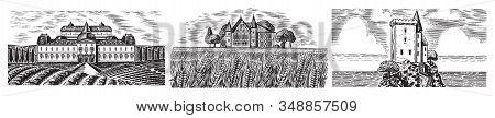 Vineyards Set. Vine Plantation For Bottle Labels. Scenic View Of French, Italian Engraved Landscape.