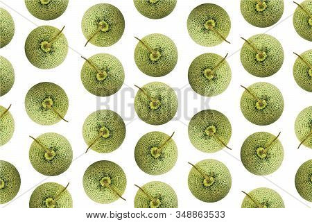 Background Pattern With Melon Isolated On White